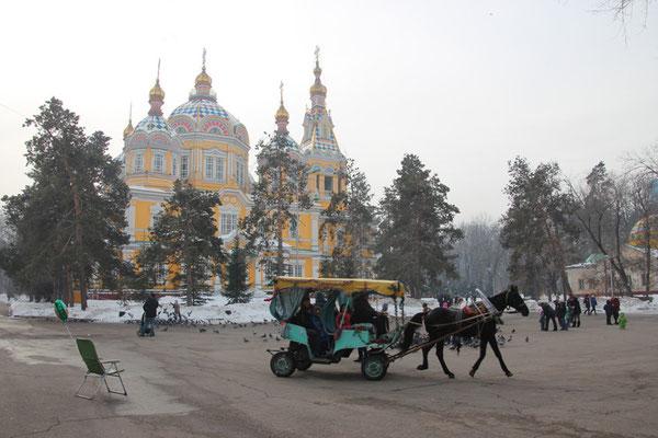 Cheval devant la cathédrale de bois
