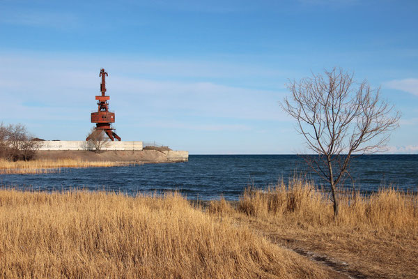 Grue au port du Lac d'Issyk Kul