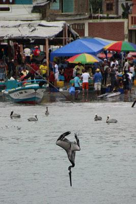 Port de Puerto Lopez