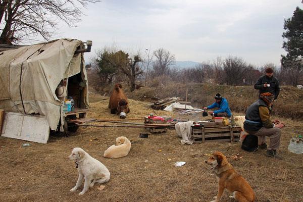 Camp de Goran, non loin de Tbilissi