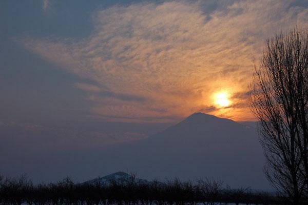 Mont Ararat, (Noé)