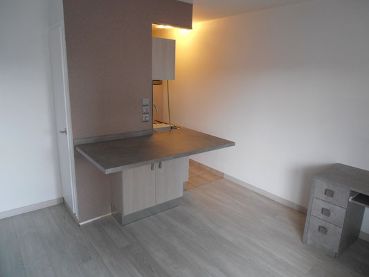 APPARTEMENT T1 ILLIRCH