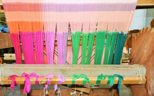 Die Baumwollfäden werden per Hand am Kettbaum festgeknotet.