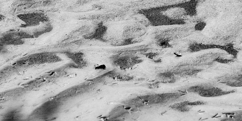 Sandmuster im Vorarlberger Rheindelta