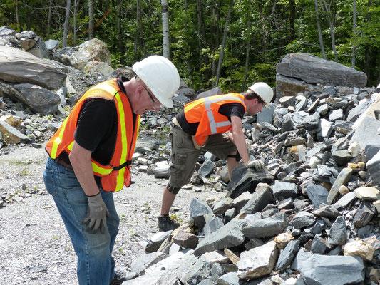Recherches dans les déchets miniers provenant d'une autre carrière, on peut trouver quelques belles pièces..., mais on ne connaît pas la provenance ?