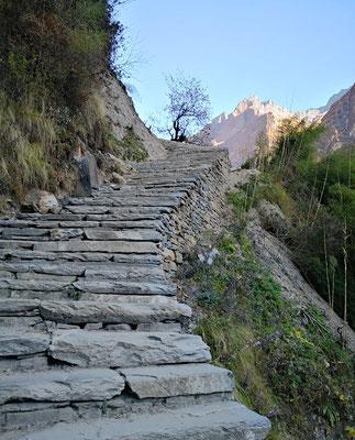 Und immer wieder schier endlose Treppen . . .