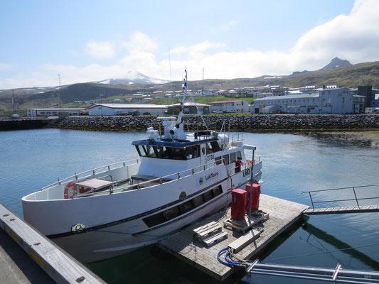 Unser Boot zum Whale Watching