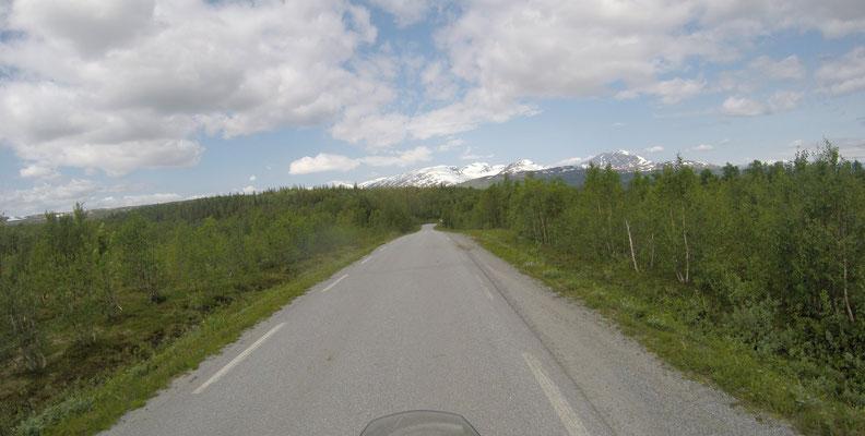 fahrt durch einen 2000 km Wald