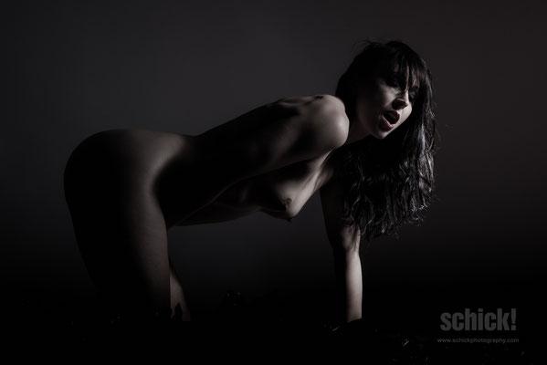 Schick!Photography - Teilakt & Akt 040