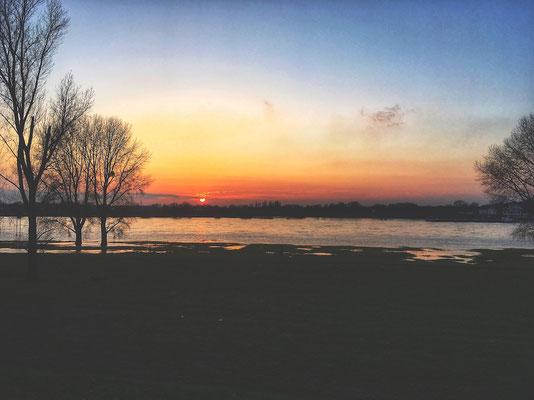 Joggen am Rhein.