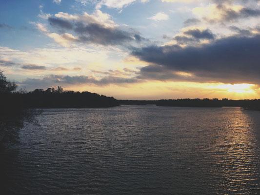 Wenn ich diesen See seh', brauche ich kein Meer mehr. Wolfssee Duisburg.