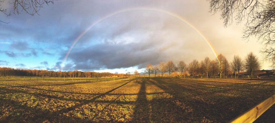 Regenbogen vor dem Spannungsbogen eines Konzertes in Hamburg.