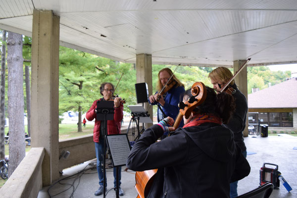 Surreal Quartet playing in Harrison Park Bandshell.