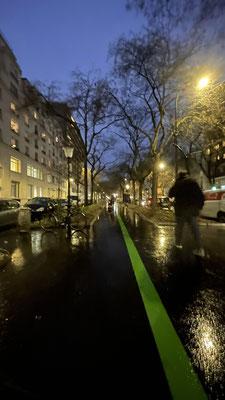 Vibrances 11 La ligne verte 7
