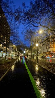 Vibrances 15 La ligne verte 11