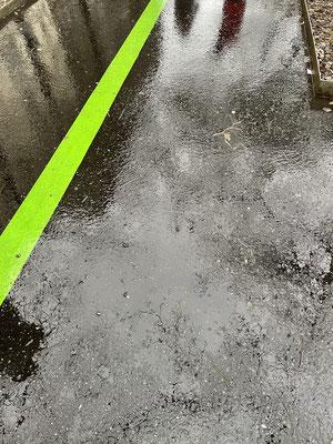 Vibrances 2 La ligne verte 1