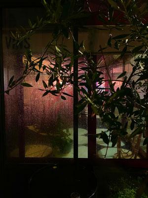 Bars de Nuit 9