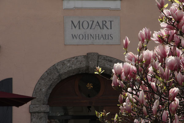 ..Guided tour with Mozart museums..