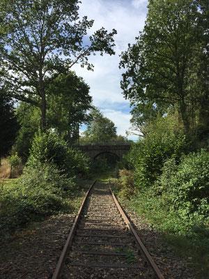 verlassene Bahnschienen zwischen Brake und Voßheide