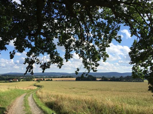 Wanderweg zwischen Lemgo und Detmold