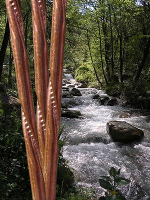 Rauber Wendelrohr zur energetischen Wasseraktivierung