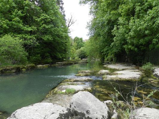 Rivière de l'Ain
