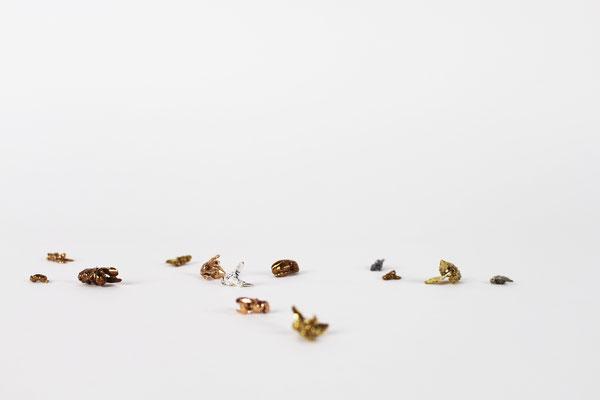 con certa o con molta probabilità, 2019. bronze, golden bronze with yellow gold, golden bronze with rose gold and silver 13 elements, life-size insects. variable dimensions