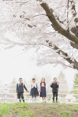 卒園,入園,卒業,入学,記念写真,ランドセル,小学校,写真,撮影,サクラ,桜,さくら,ロケ,ロケーションフォト,友達,姫路