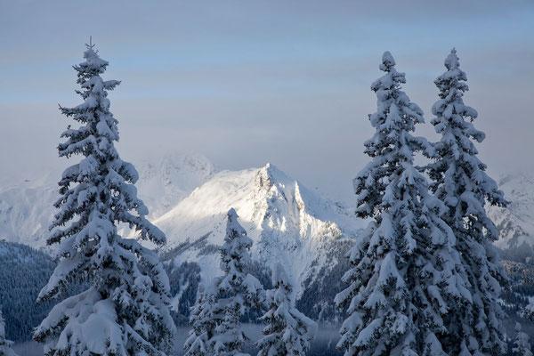 Winter Montafon - Foto bergeimlicht.com - 35