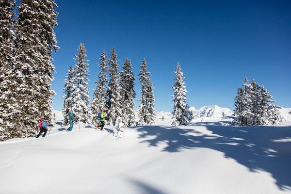 Winter Montafon - Foto bergeimlicht.com - 47