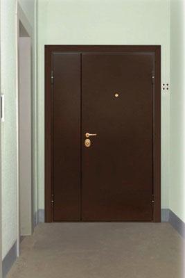 подъездные двери порошковый покрас