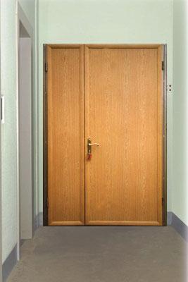 подъездные двери ламинат