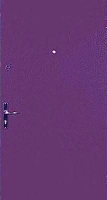 Дверь серии ПН №5.