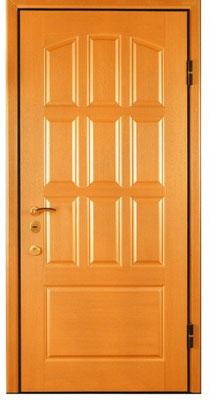 металлическая дверь серии МДФ № 1.