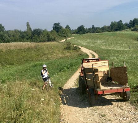 Gegenverkehr in der Pampa