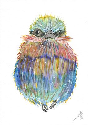 The multi-faceted bird - 06/2019 - 17x24 cm - Aquarell auf 450g Aquarellpapier