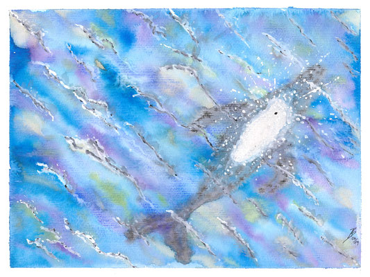 On the ocean - 06/2019 - 24x32 cm - Aquarell auf 300g Aquarellpapier