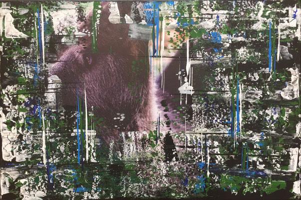 The Bear - 06/2019 - 40x60 cm - Acryl auf Fotoleinwand