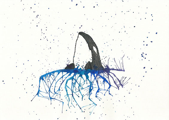 The Orca - 09/2018 - 21x29,7 cm - Aquarell auf 170g Skizzenpapier
