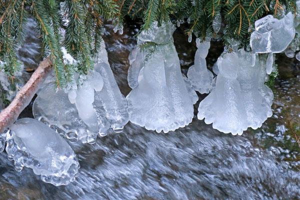 Eiszeit, Foto: Annelies Neumann