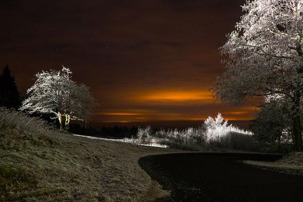 Raureif, Foto: Josef Beinrucker