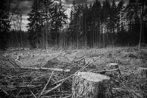 Bild 07: Zerstörung
