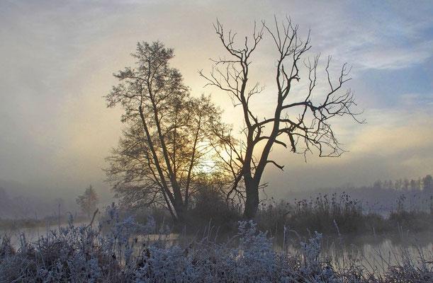 Dezembermorgen, Foto: Annelies Neumann