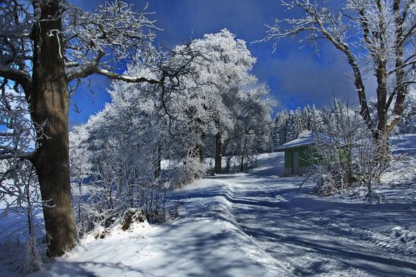 Bild 09: Winterzauber; Foto: Dieter Neumann