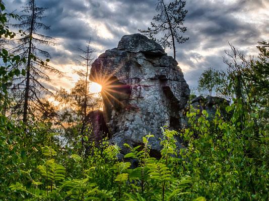 Bild 09: Steinwaldsphinx, Foto: Elke Engelmaier