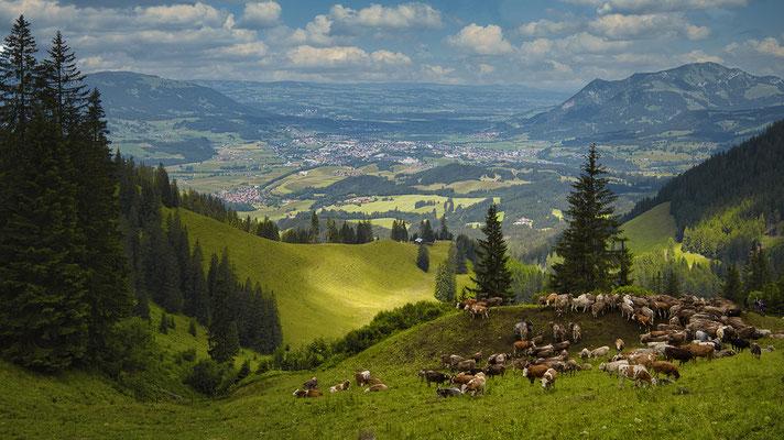 Wandern im Allgäu, Foto: Josef Beinrucker