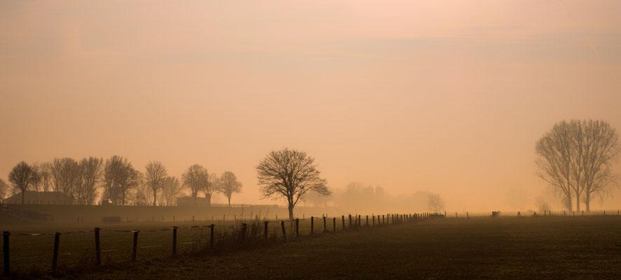 Auenland, Foto: Heiko Prechtl