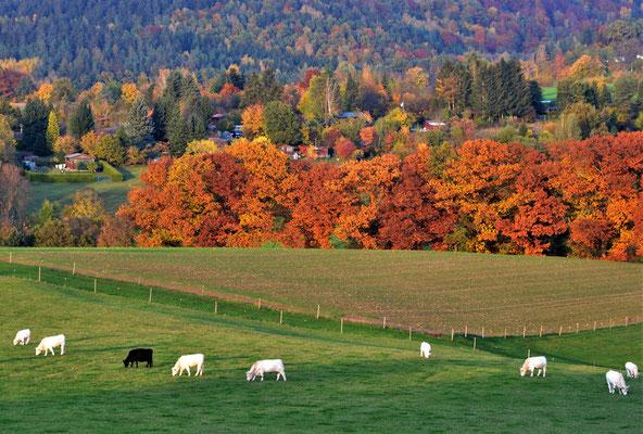 Bild 06: Herbstidylle, Foto: Bernhard Czichon