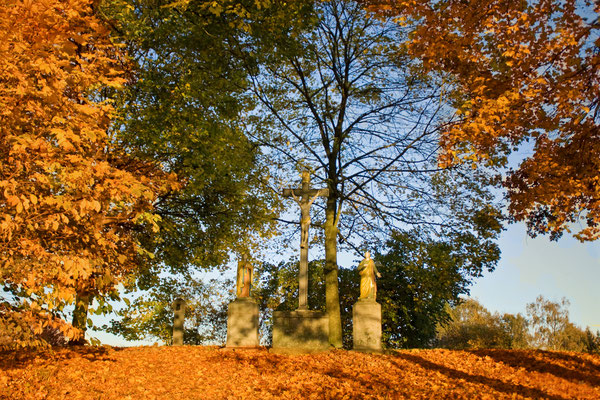 Goldener Oktober, Foto: Christina Bäumler