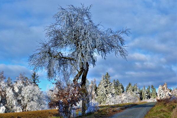 Bild 02: Eiskalt erwischt, Foto: Margarete Czichon